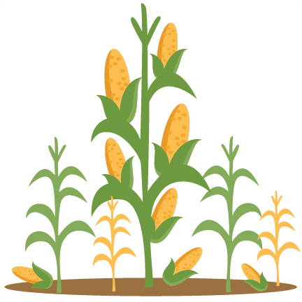 corn stalk clip art � cliparts